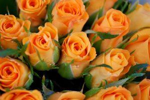 Flowers Jingles